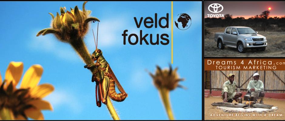 VeldFokus